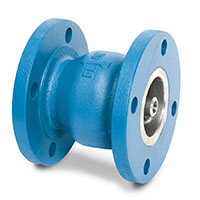 GLC® Cast Iron Body Check Valves