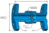 DLC® Flanged Check Valves